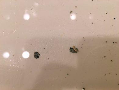 川崎市中原区 風呂釜洗浄⑦