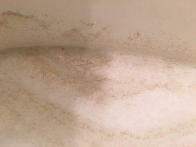川崎市中原区 風呂釜洗浄⑬