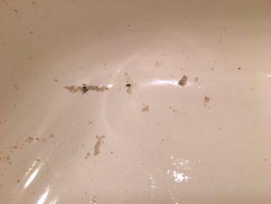 川崎市中原区 風呂釜洗浄⑰