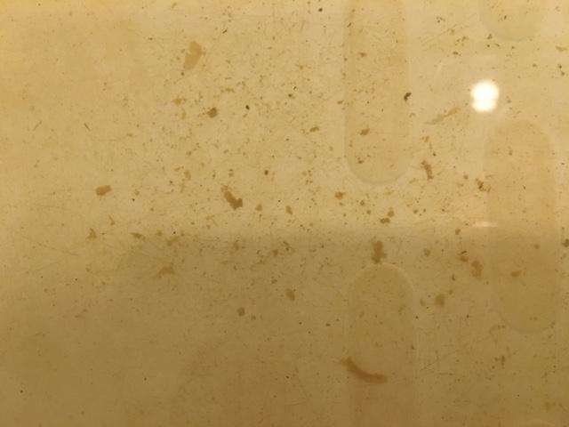 新宿区 風呂釜洗浄⑥