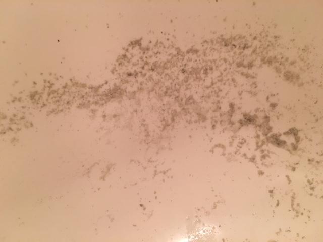 麻生区 風呂釜洗浄⑩