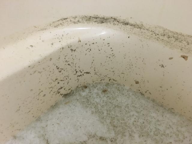 相模原市 風呂釜洗浄⑩