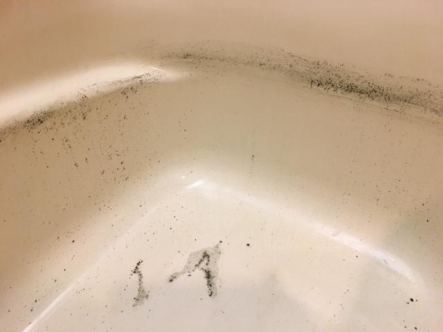 世田谷区野沢 風呂釜洗浄⑩