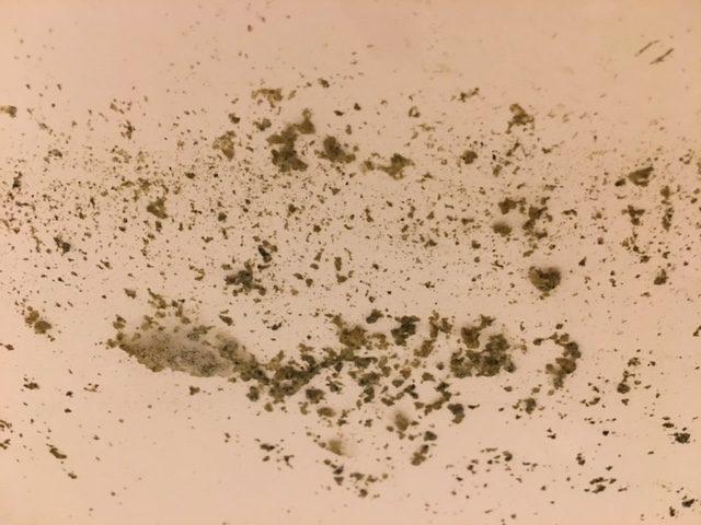 湯張りで黒い汚れが止まらない21