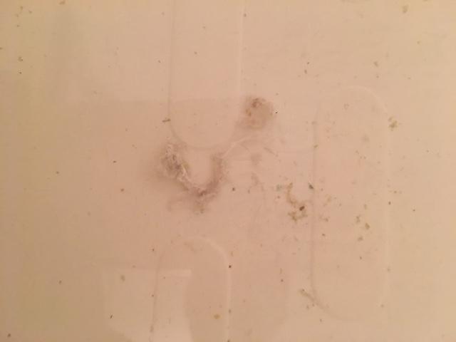 藤沢市 風呂釜追い焚き配管洗浄⑦