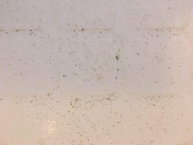 小平市 風呂釜洗浄⑭