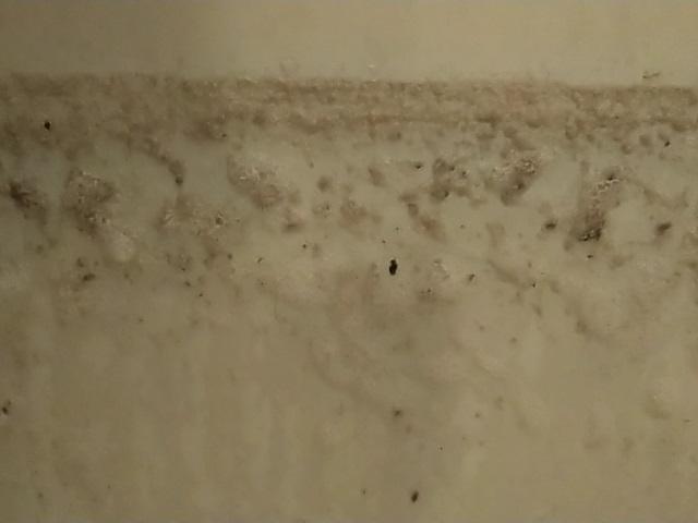 横浜市中区 追い焚き配管洗浄(風呂釜洗浄)⑳