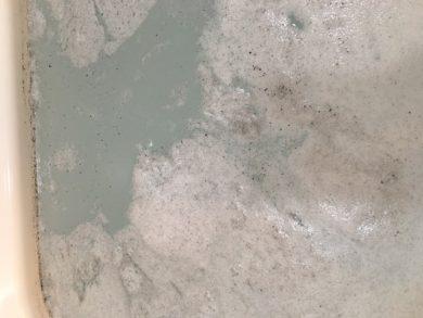 文京区 風呂釜洗浄⑥