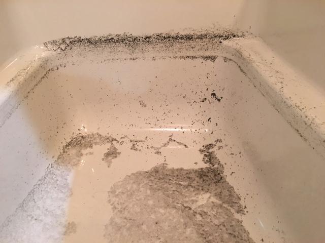 大田区南雪谷 風呂釜洗浄⑪