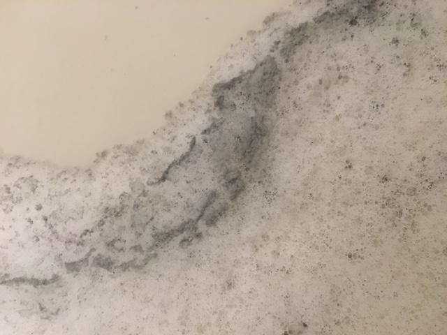 船橋市 風呂釜洗浄⑯