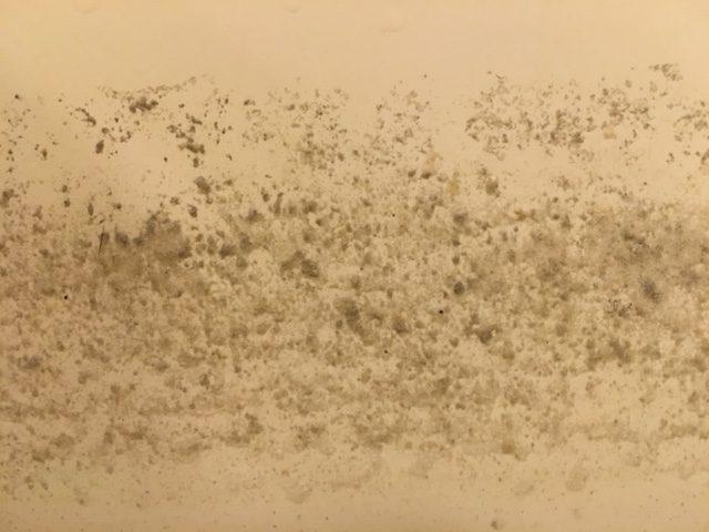 新宿区 風呂釜洗浄⑭