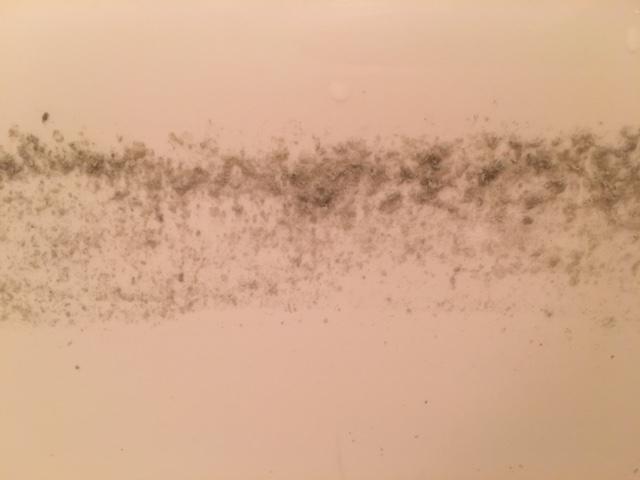 麻生区 風呂釜洗浄⑨