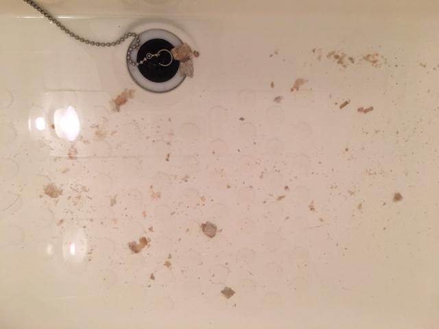 湯張りでお湯を入れると、ドブのような臭いがする③