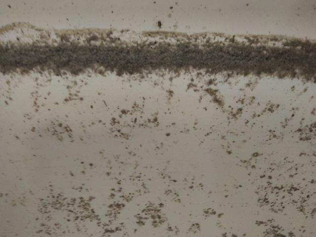 品川区 追い焚き配管洗浄⑯